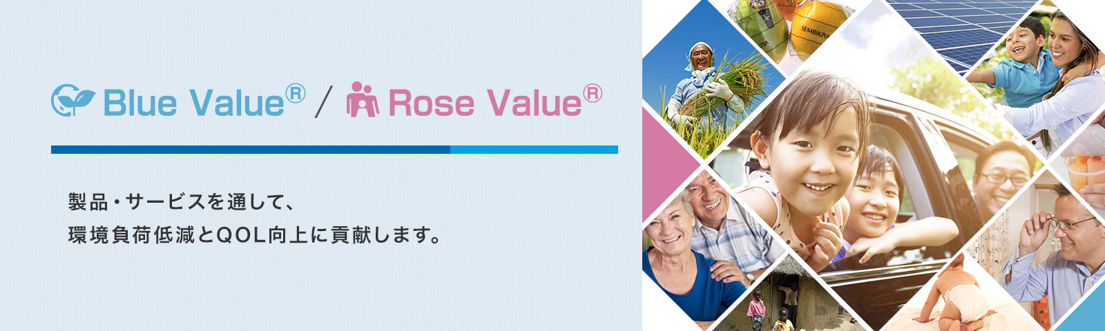 Blue Value<sup>®</sup> / Rose Value<sup>®</sup>製品