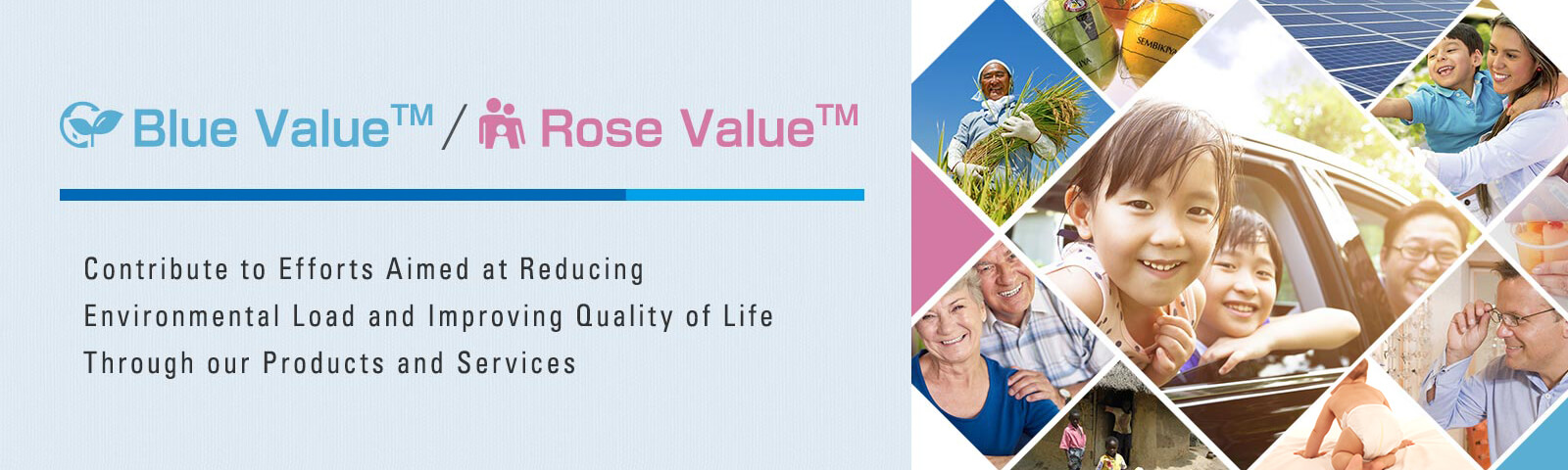 Blue Value™ / Rose Value™ Products